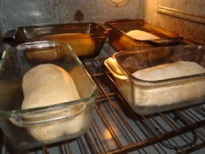 bread dough rises in oven