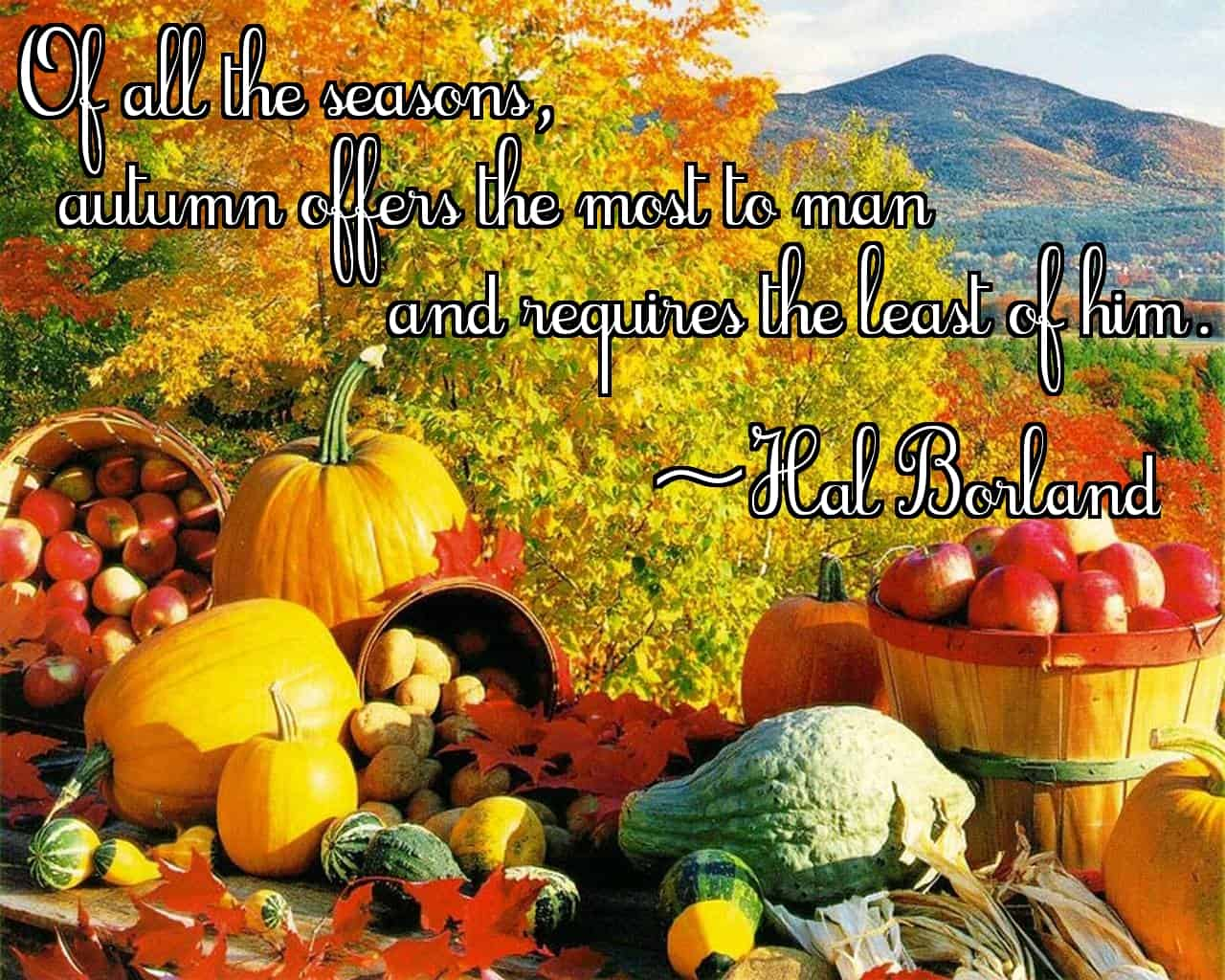 """Of all the seasons, autumn offers the most to man and requires the least of him."" ~Hal Borland"