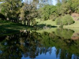 Rincon del Rio's on-site pond