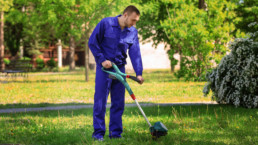 Landscaping maintenance for seniors